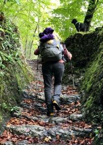 Zwischen  zwei Abhängen eine Treppe aus Naturgestein . Eine Frau mit grossem Rucksack und Wanderstöcken geht aufwärts .